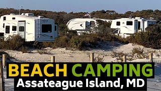 Assateague Island Camping - Maryland