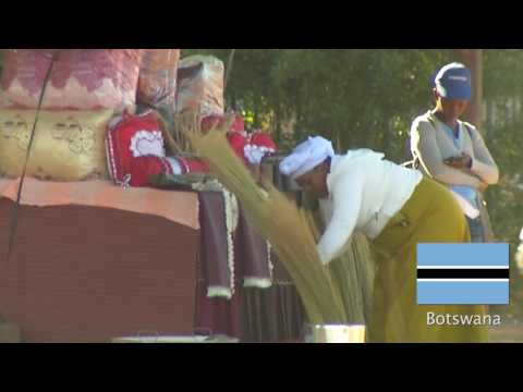 FIRST Global - Team Botswana