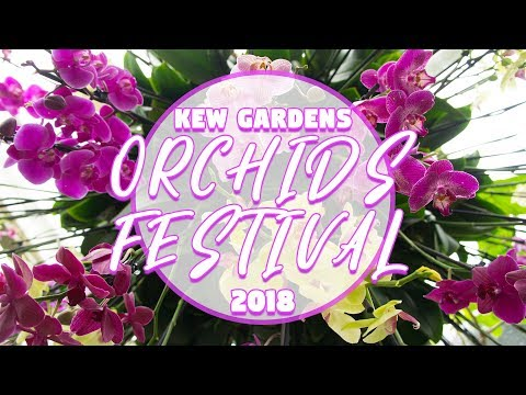 ORCHIDS FESTIVAL 2018 flower show at Kew Gardens [Beautiful Nature] | SKY CHRISTINA