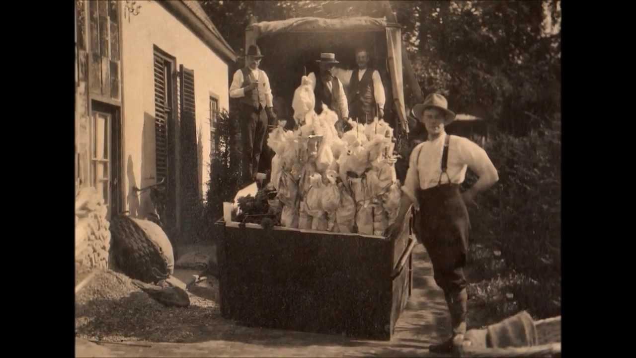 Dahliakwekersfamilie hornsveld uit baarn in 3d   youtube