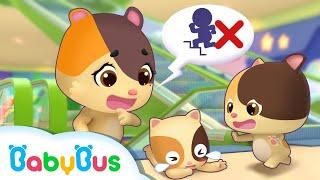 El Viaje al Centro Comercial de Gatitos | Canciones Infantiles | BabyBus Español