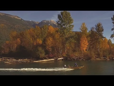 Fishing BC Presents On The River With Reel Adventures Near Nelson, BC