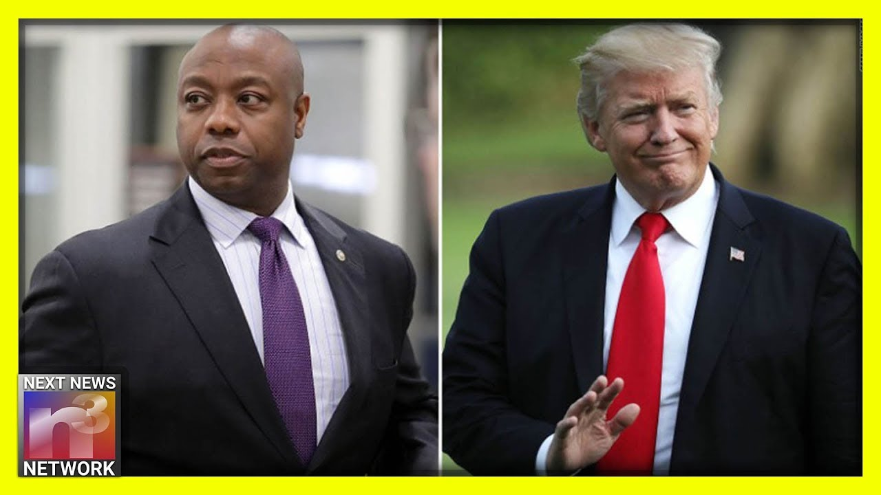 Tim Scott Reveals 2020 Dems EVIL Plan To Steal Black Votes!