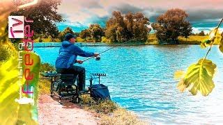 Рыбалка на фидер. Как поймать карпа. Прикормка для карпа. Vlog#39 Feeder fishing tv. Рыбалка 2019.
