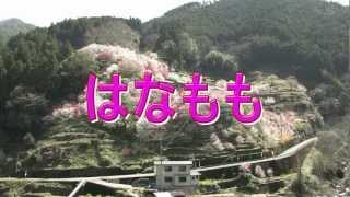 Repeat youtube video NHK高知ビデオクラブ会員作品 桃源郷