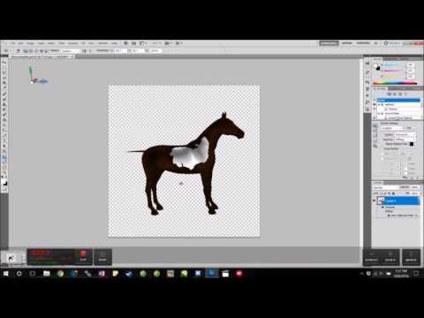 Sims 3 Horse Marking Tutorial