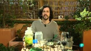 Biobricolaje 20º. Ecoesferas y miniestanques