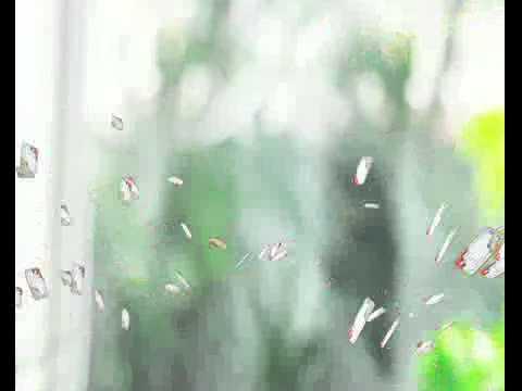 Pho mai con bo cuoi khuyen mai thongtinkhuyenmai com vn