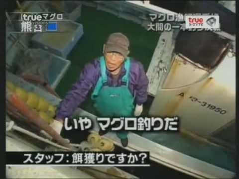 Tv Champion ตกปลามากูโร่-2