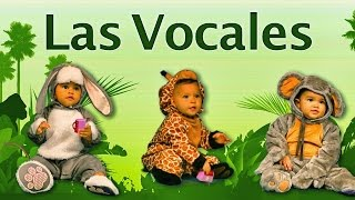 La Cancion de las Vocales | Bebes Disfrazados | Videos Infantiles | Babytubers Lunacreciente