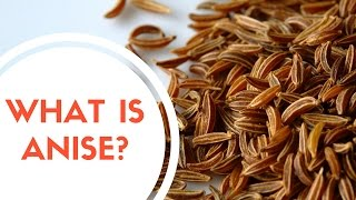 What Is Anise?