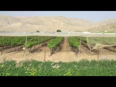 Pertanian Israel Youtube