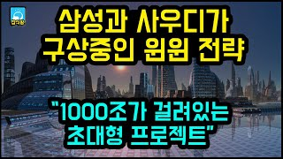 삼성과 사우디가 구상중인 윈윈 전략 / 1000조가 걸려있는 초대형 프로젝트 [잡식왕]