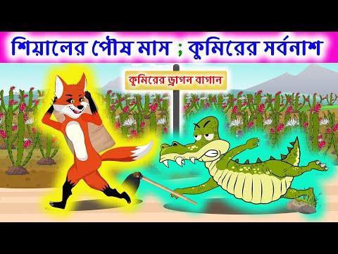 শিয়ালের পৌষমাস;কুমিরের সর্বনাশ    Fox Cartoon   Bangla Cartoon Story ।  Brain Games ধাঁধা