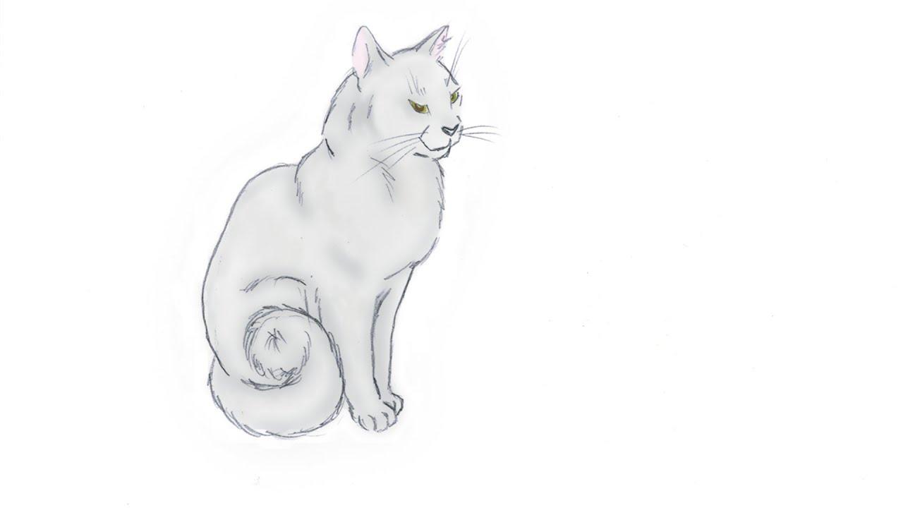 Кот домашние животные рассказываем и рисуем