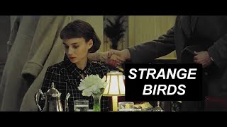 Carol + Therese |Strange Birds
