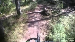 Lieto XCO/fatbike-rata