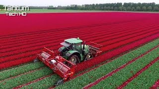 Amazing Modern and High Level Farming Machines like you've never seen ▶ 13