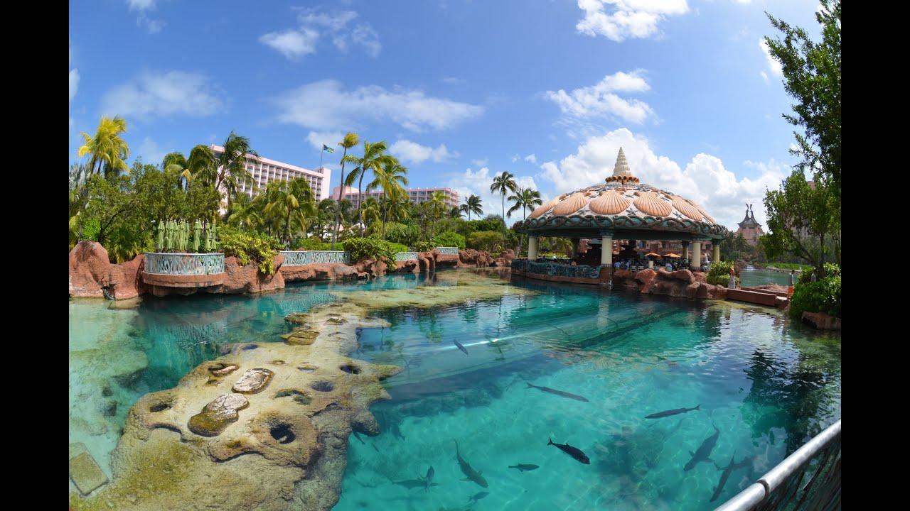 Long Island Aquarium Hotel