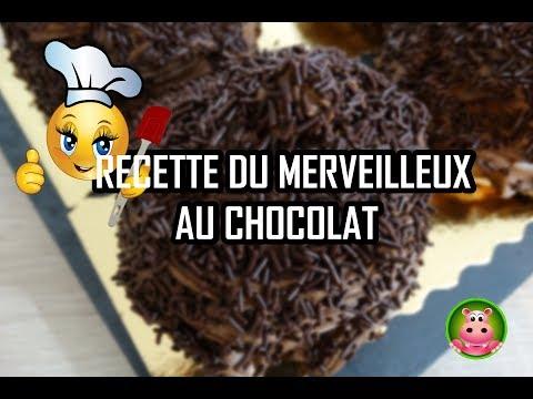 cookexpert-de-magimix---recette-du-merveilleux-au-chocolat