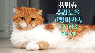 LIVE ]오늘도 팬선물 대 개봉기! 8월13일(일) 8:30PM 【SURI&NOEL】