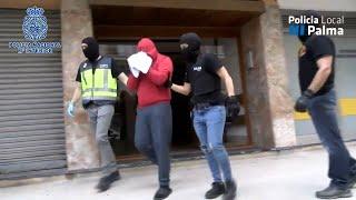 La Policía desmantela una plantación de marihuana en un piso de Palma