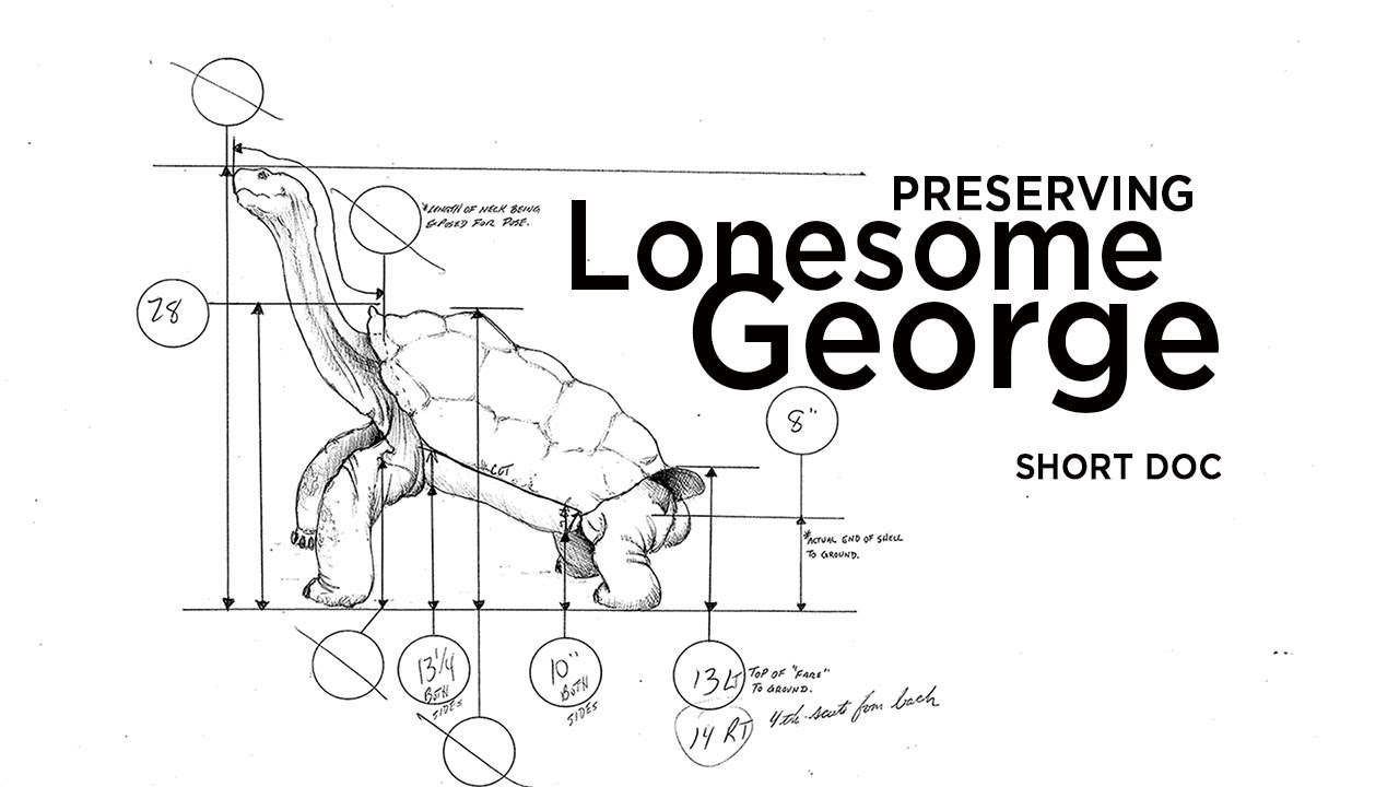 Preserving Lonesome George Short Doc