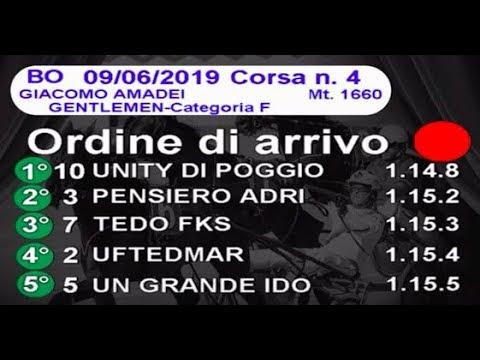 2019 06 09   Corsa 4   Metri 1660   Premio Giacomo Amadei