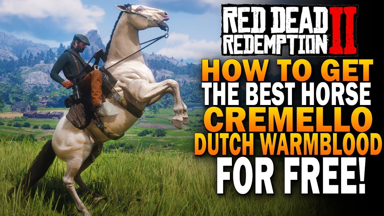 How To Get The Best Horse Cramello Gold Dutch Warmblood Red Dead