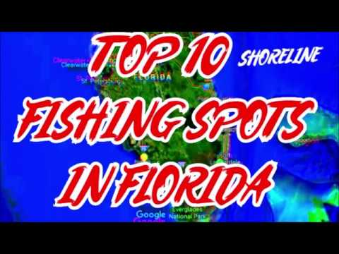 TOP 10  - BEST FISHING SPOTS IN FLORIDA  - SHORELINE