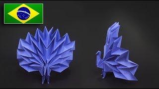Origami: Pavão - Instruções em Português BR