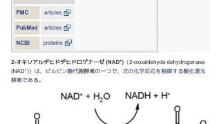 「2-オキソアルデヒドデヒドロゲナーゼ (NAD+)」とは ウィキ動画