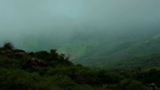 Rising mist on Ponmudi hills