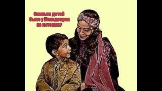 Сколько детей было у Махидевран на самом деле?