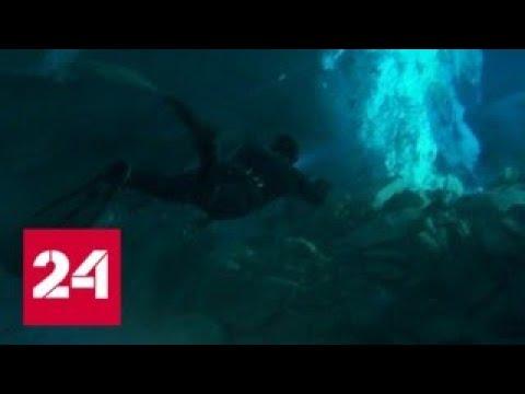 Дух приключений: иркутские фридайверы погрузятся под лед Байкала - Россия 24