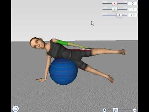 Mavenlive Online Physical Therapy Software