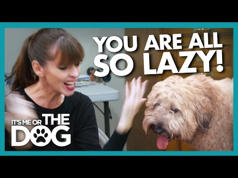 Laziness and Lies Make Victoria Lose Patience With Family |  It's Me or The Dog