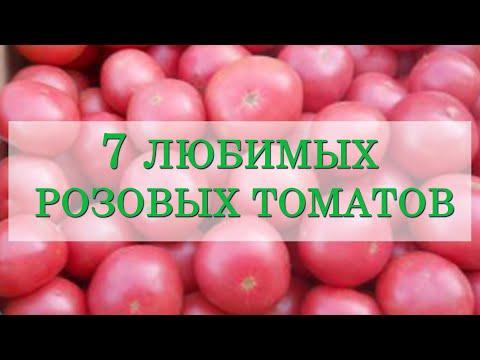7 любимых розовых томатов. С этими томатами мы уверенны в большом и вкусном урожае!