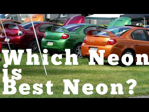 Which Neon Is Best Neon?