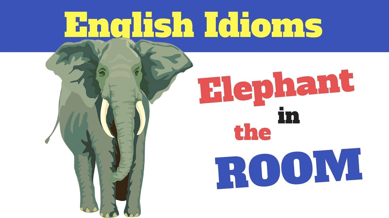 Meaning Of Quot Elephant In The Room Quot Youtube