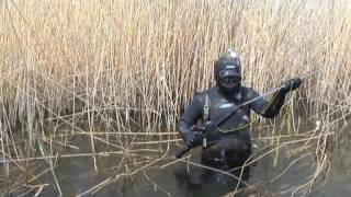 видео Подводные ружья