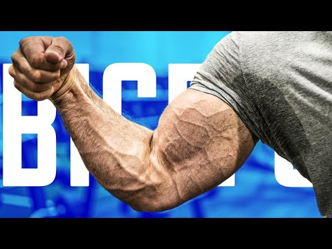 Bicep Exercises YOU'RE DOING WRONG!