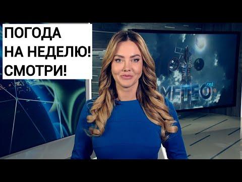 Погода на неделю 30 марта - 5 апреля 2020. Прогноз погоды. Беларусь | Метеогид