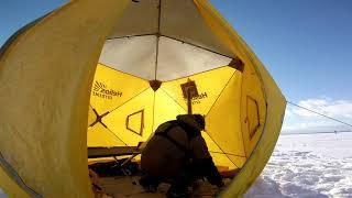 Батоны лупят только опускай Зимняя Рыбалка на Куршском заливе