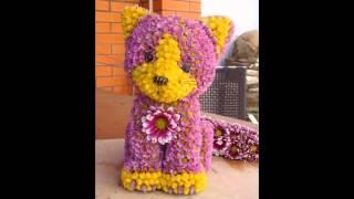 видео Игрушки из живых цветов