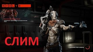Evolve Слим(PC 1080p)