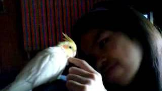 Milly And Regina Top Funny Cool Bird In Mouth Pet Trick