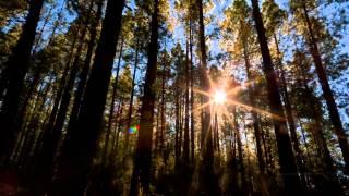 Уливительно красивое видео с жизни млечного пути