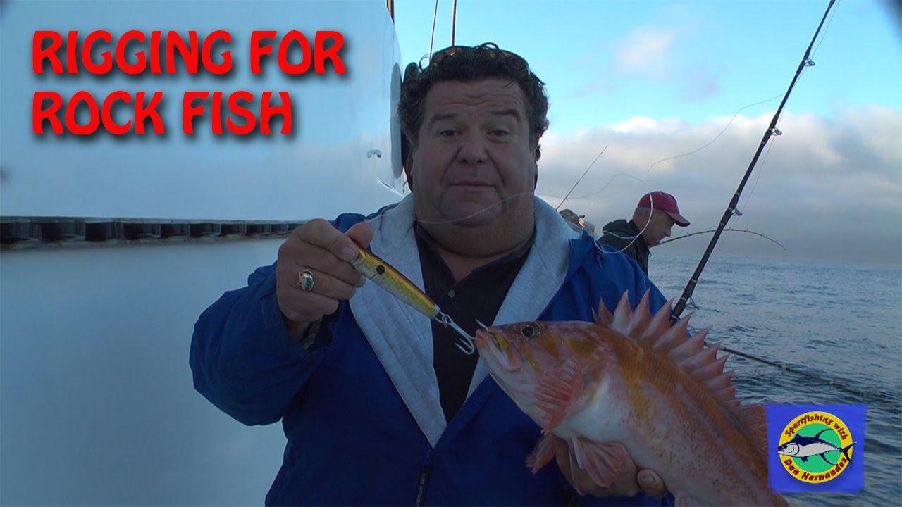 Rigging up for rock fish blog by dan hernandez sport for Sport fishing with dan hernandez
