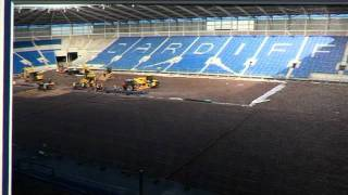 Ninian Park Project - the witness of Cardiff City Football Club